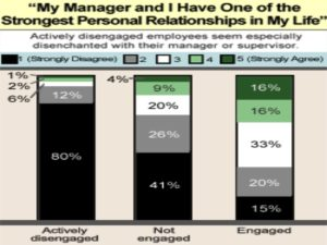 Gallup Mgmt Graph